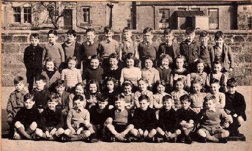 Nesies 1949